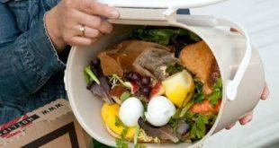 comida-en-la-basura-stop-wasting-food-3-480x357